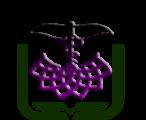 کمیته تحقیقات دانشجویان دانشکده بهداشت و ایمنی